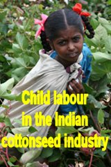CLICK HERE for more information on CHILD LABOUR IN THE INDIAN COTTONSEED INDUSTRY